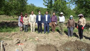 Discovery of prehistoric artifacts in Lorestan archaeological excavations