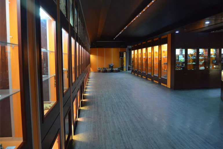 Museum of Earth Sciences
