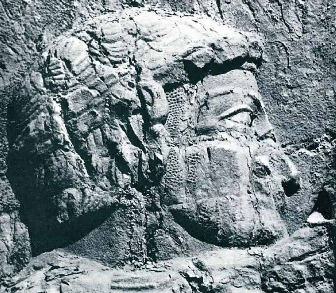 Photo of Shapur's victory over the emperors Rome